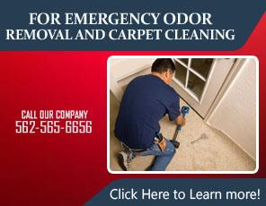 Rug Cleaning Service - Carpet Cleaning La Habra, CA